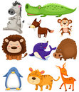 Wild animals set Royalty Free Stock Photo