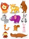 Divoký zvířata sada