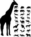 Wild animals silhouette Royalty Free Stock Photos