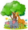 Wild animals standing under the tree