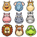 Wild animals vector illustration of faces cartoons Royalty Free Stock Photo