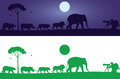 Wild animals wall decal it's an attractive life silhouette containing different there are different color options for it Stock Images