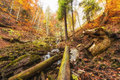 Wild autumn mountain forest with waterfall, nature colorful landscape