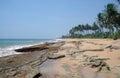 Wild beach on sri lanka coast Stock Photo