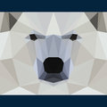 Wild bear stares forward. Nature and animals life theme background. Abstract geometric polygonal triangle illustration Royalty Free Stock Photo