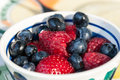 Wild berries in a bowl Stock Images