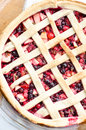 Wild berries pie crust close up Royalty Free Stock Images