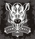Wild Boar Head Logo Stock Photography
