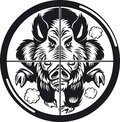 Wild boar in rifle scope crosshair sight charging Royalty Free Stock Photo
