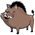 Wild boar vector illustration of Stock Photo