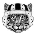Wild cat Fishing cat Wild animal wearing rugby helmet Sport illustration