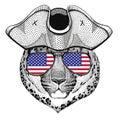 Wild cat Leopard Cat-o`-mountain Panther wearing pirate hat Cocked hat, tricorn Sailor, seaman, mariner, or seafarer