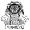 Wild cat Manul Astronaut. Space suit. Hand drawn image of lion for tattoo, t-shirt, emblem, badge, logo patch Royalty Free Stock Photo