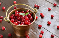 Wild cranberry in little brass bucket pail full of red cranberries on wet wooden background Royalty Free Stock Photos