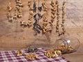 Wild Edible Mushroom Still Life Royalty Free Stock Photo