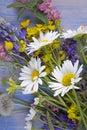 Wild flowers on blue wooden deck background chamomile lupine da