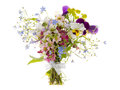 Wild flowers in the bouquet Royalty Free Stock Photo