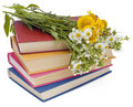 Wild flowers and old books Royalty Free Stock Photo