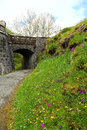 Wild flowers and old castle bridge a pathway below an a slope carpeted with green grass taken in isle of sky scotland Royalty Free Stock Image