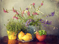 Wild flowers in vase, herbs and lemon fruits Royalty Free Stock Photo