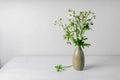 Wild flowers in vase Royalty Free Stock Photo