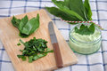 Wild garlic chopped with a knife Stock Photos