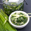 Wild garlic pesto fresh on a slate Stock Images