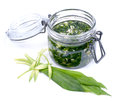 Wild garlic pesto fresh on white ground Royalty Free Stock Photo