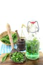 Wild garlic tincture in a bottle with mortar on light background Royalty Free Stock Photography