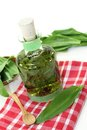 Wild garlic tincture a bottle on a white background Stock Image