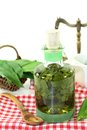 Wild garlic tincture a bottle on a white background Stock Images