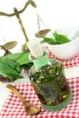 Wild garlic tincture a bottle on a white background Royalty Free Stock Images