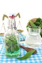 Wild garlic tincture with scale in a bottle on light background Royalty Free Stock Photography