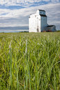 Wild Grass and Grain Elevator on Canadian Prairie Royalty Free Stock Photo