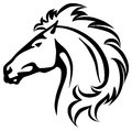 Wild horse s head vector illustration of a Royalty Free Stock Photography