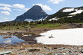 Wild mountain goat laying sunshine sheet snow which gradually melting puddle large mountains background glacier national park Stock Images