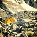 Wild mountain goats near Rock Climbing camp. Caucasus Mountains. Royalty Free Stock Photo