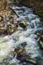 A Wild Mountain Trout Stream in the Blue Ridge Mountains Royalty Free Stock Photo