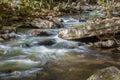 Wild Mountain Trout Stream Royalty Free Stock Photo