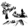 Wild nature Mountain Wood Trees North landscape