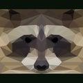 Wild raccoon stares forward. Abstract geometric polygonal triangle illustration