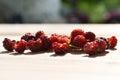 Wild raspberries handful of freshly picked Stock Photo