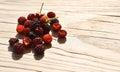 Wild raspberries handful of freshly picked Royalty Free Stock Images