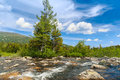 Wild river in the mountains with background Stock Photography