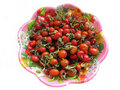 Wild rose berries on the plate Royalty Free Stock Photo