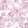 Wild roses plant with flowers in red ink. Hand drawn vector etch style seamless surface pattern. Buds, leaves, stems on
