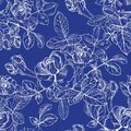 Wild roses plant with flowers in white ink on blue. Hand drawn vector etch style seamless surface pattern. Buds, leaves