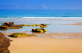 Wild sand beach at ocean  coast Royalty Free Stock Photo