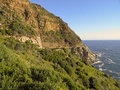 Wild South African coast line full of wild flowers Royalty Free Stock Photo