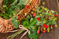 Wild Strawberies basket Royalty Free Stock Photo